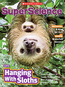 Hanging with Sloths Super Science magazine.